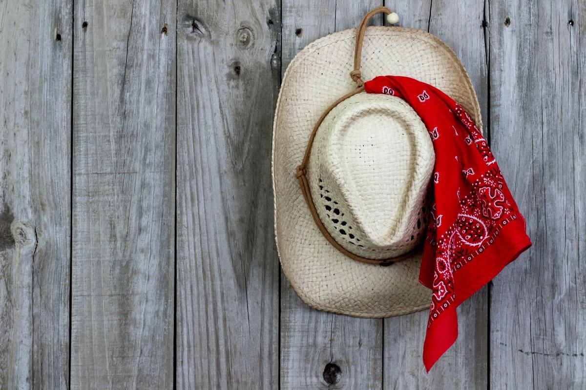 Programmet er klart!  Cowboy-fest på fredag –Jihaaa